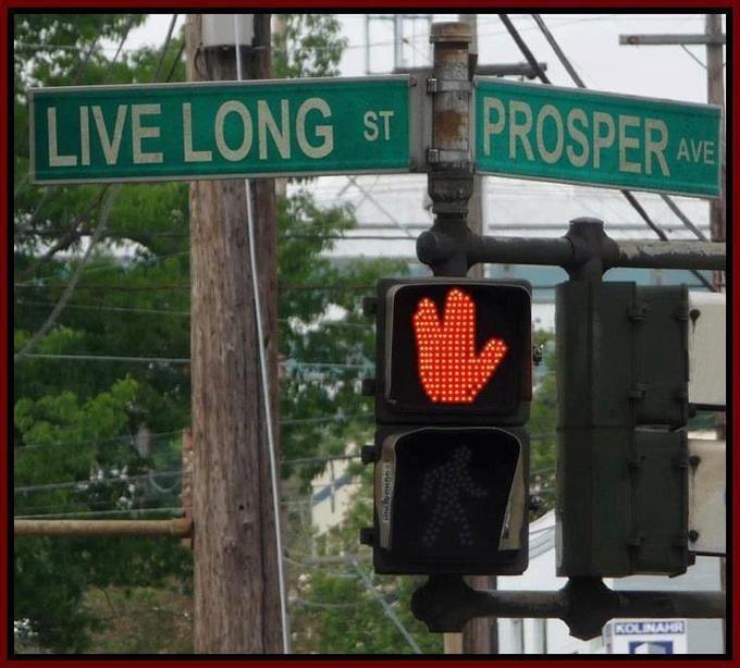 Live Long Street & Prosper Avenue