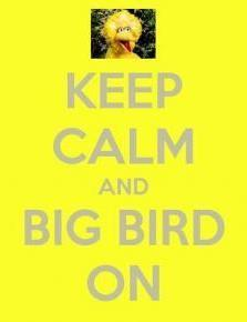 Keep Calm and Big Bird On