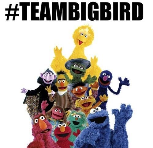 #TeamBigBird