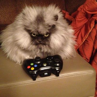 """It's time to play some Gears of War....or as I like to call it, practice. Bwahahahaha!"""