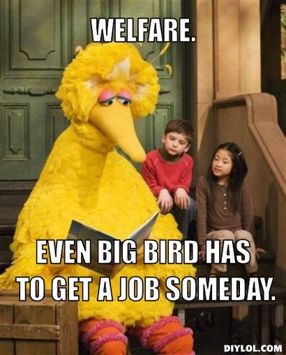 Big Bird Welfare
