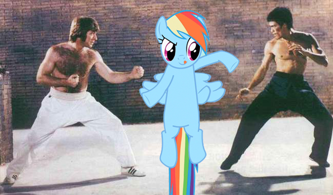 bruce lee vs. rainbow dash vs. chuck norris