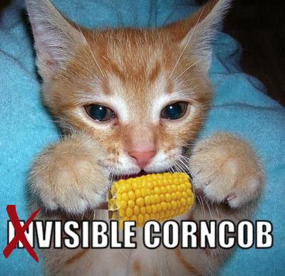 No invisible corncob