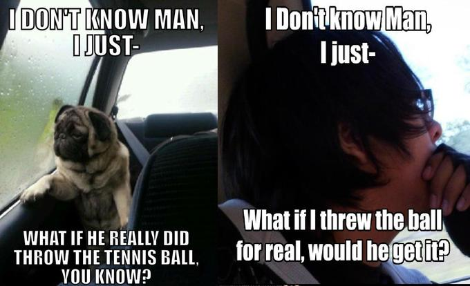 Introspective Pug with Introspective Guy