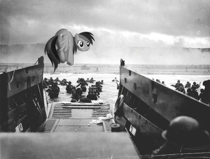 Rainbow Dash on Omaha beach
