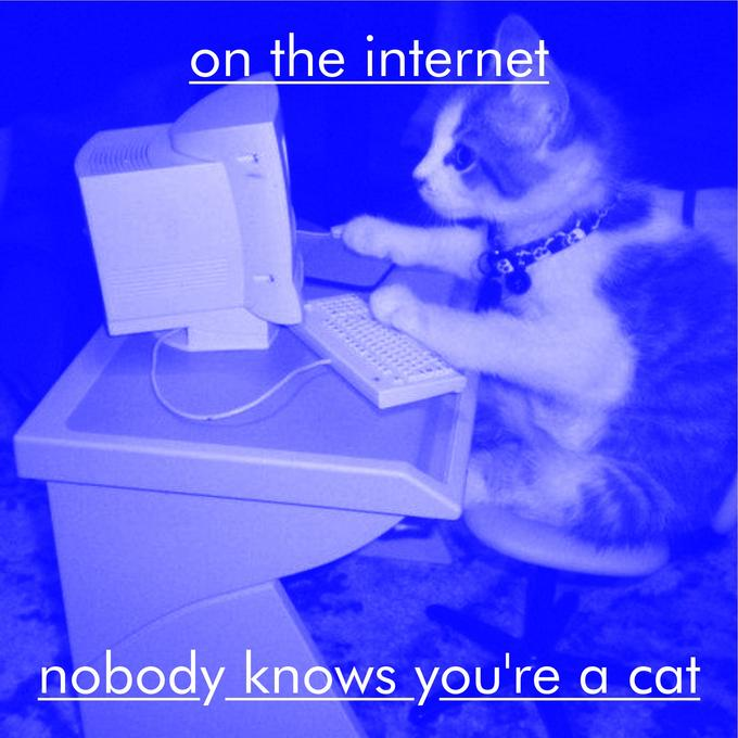 On the Internet, Nobody Knows You're a Cat