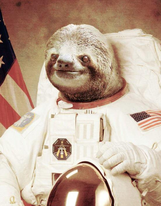 nasa sloth -#main