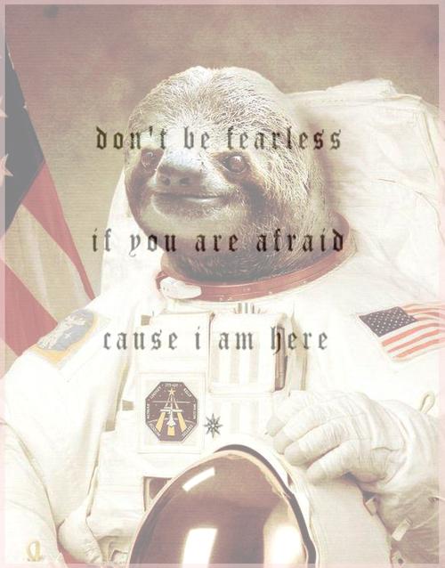 astronaut sloth meme - photo #12
