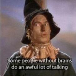 Some people without brains do an awful lot of talking