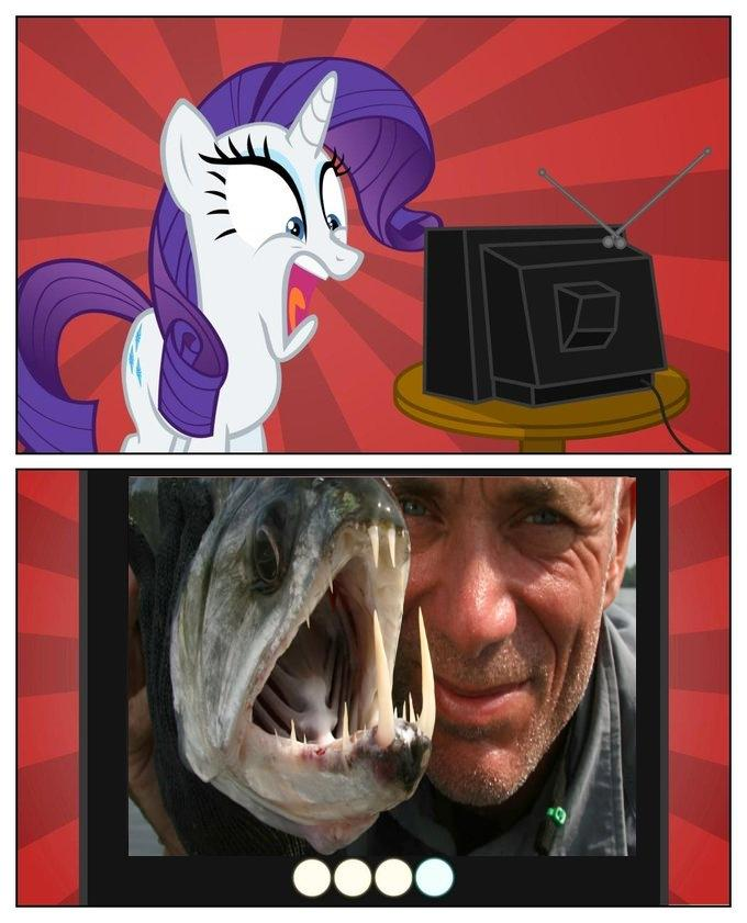 Rarity watches River Monsters