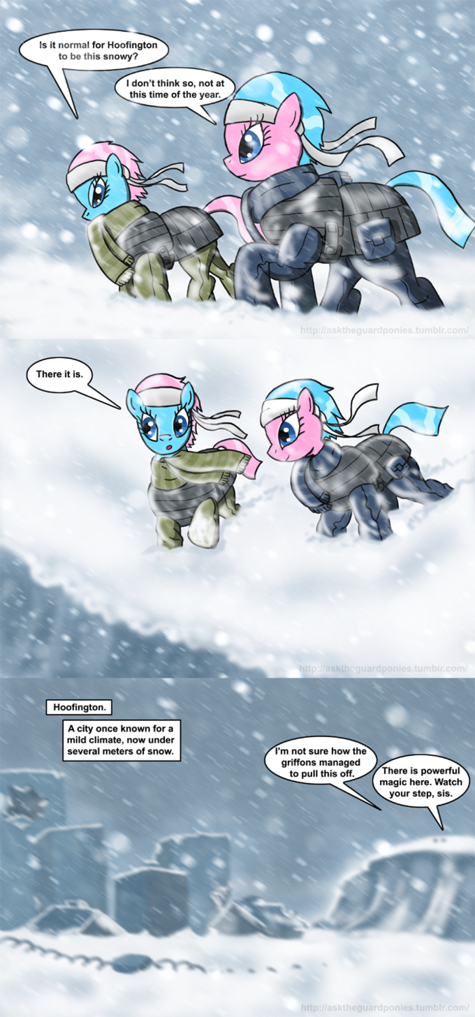 Ask the Guard Ponies