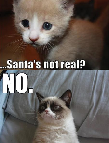 Grumpy Cat Memes No SANTA? NO! | Grumpy Ca...