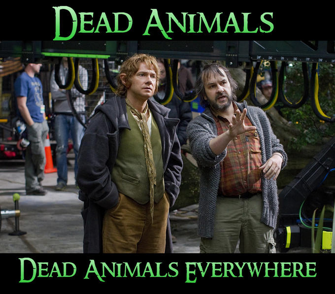 Dead Animals. Dead animals everywhere.
