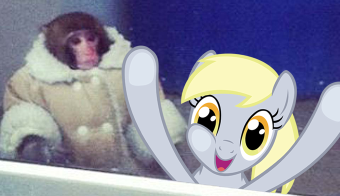 derpy hooves with ikea monkey