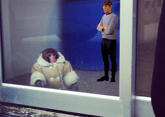 Ikea monkey doesn't impress Spock
