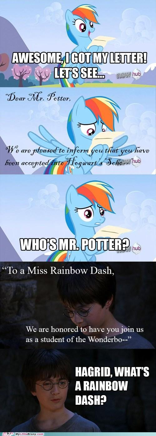 Dashie's a wizard now.