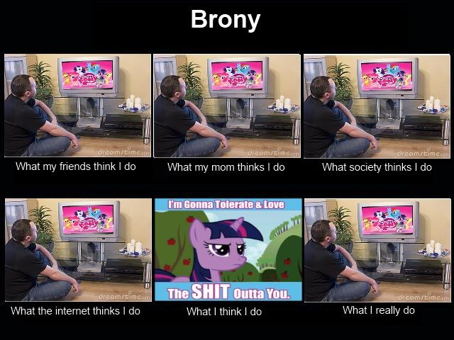 What people think bronies do