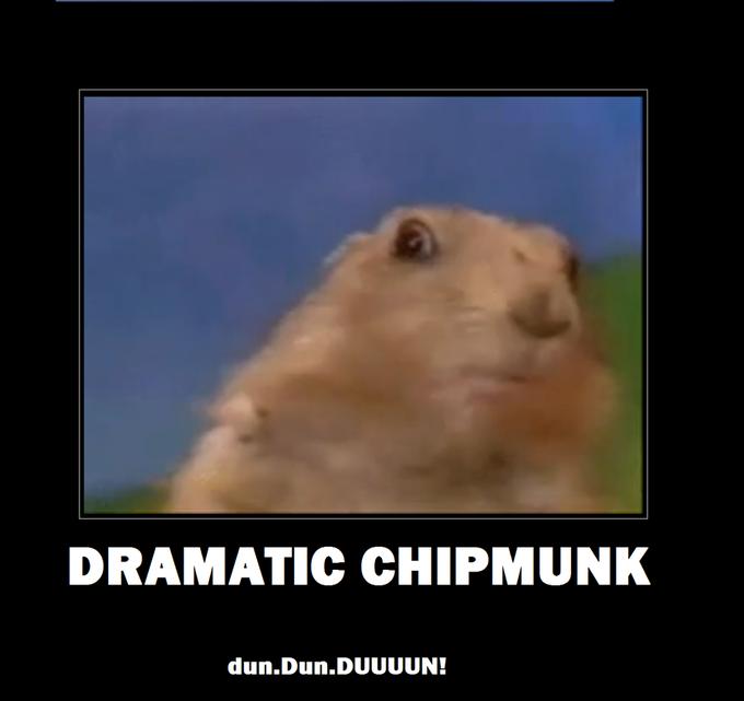 dramatic chipmunk