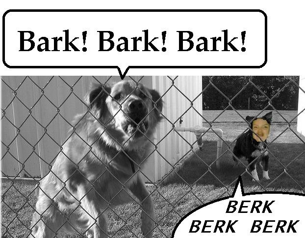 Berk like a derg