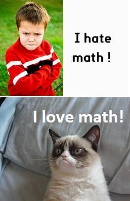 Grumpy cat math