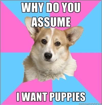 WHY DO YOU ASSUME I WANT PUPPIES