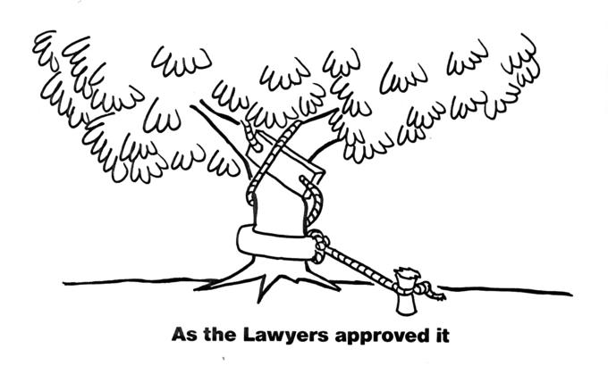 Tree swing - As the lawyers approved it.