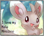 Male Minccino stamp