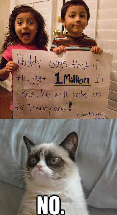 grumpy cat says no to disney world