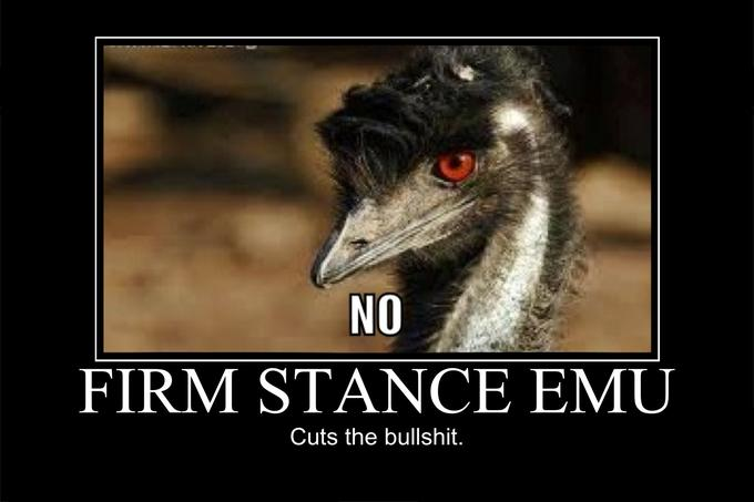 Firm Stance Emu