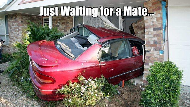 Just waiting for a mate...