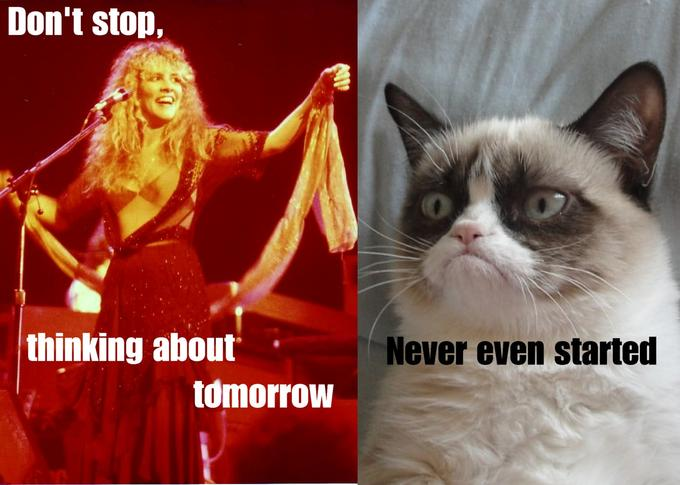 grumpy cat meets Fleetwood mac