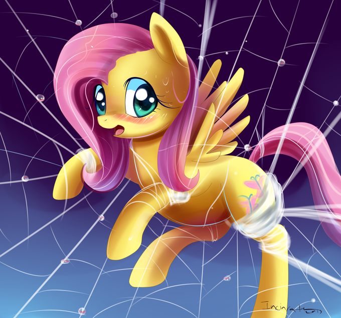 Fluttershy in web