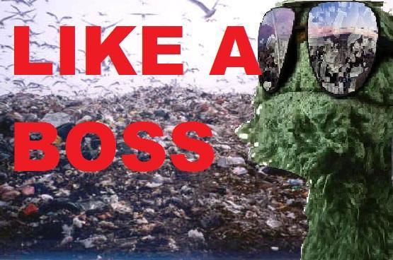Oscar Like A Boss