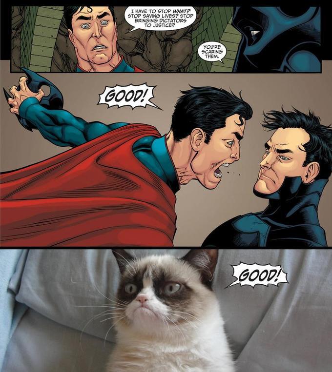 Tard and Superman agree