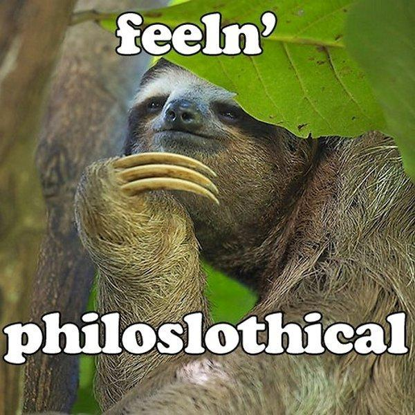 Philoslothical