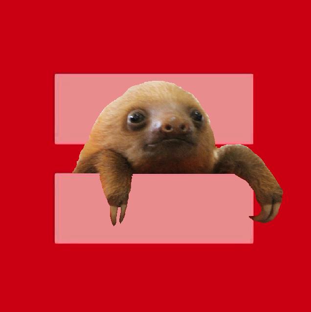 Sloth Equality