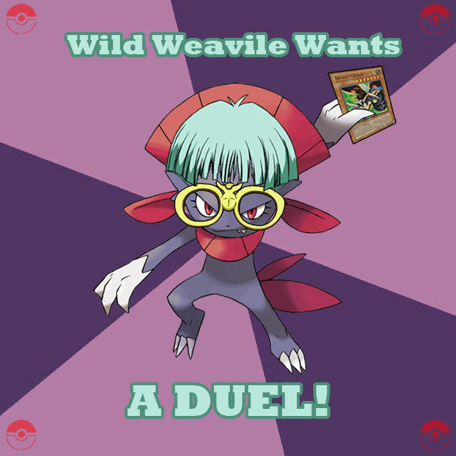 Wild Weavile Wants A Duel