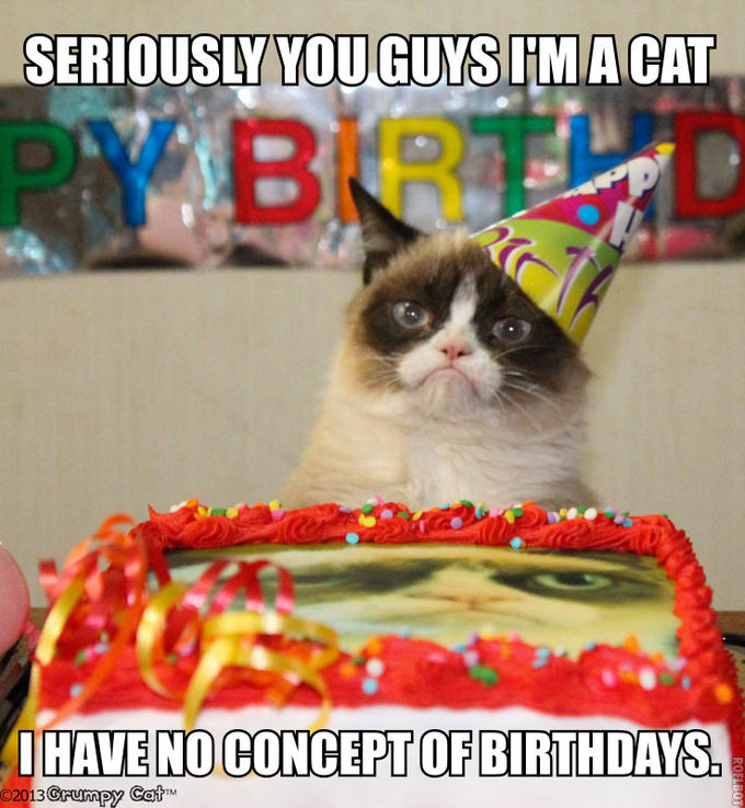 Grump Cat Birthday