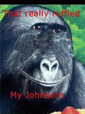 That Really Ruffled My Johnsons