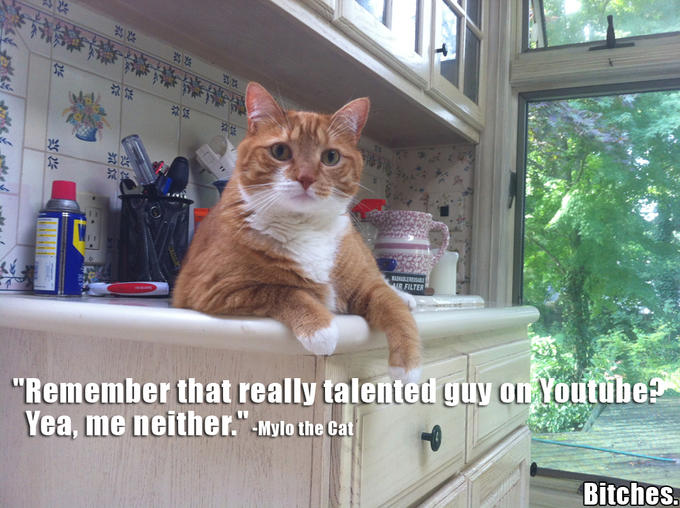 Really Talented Youtuber