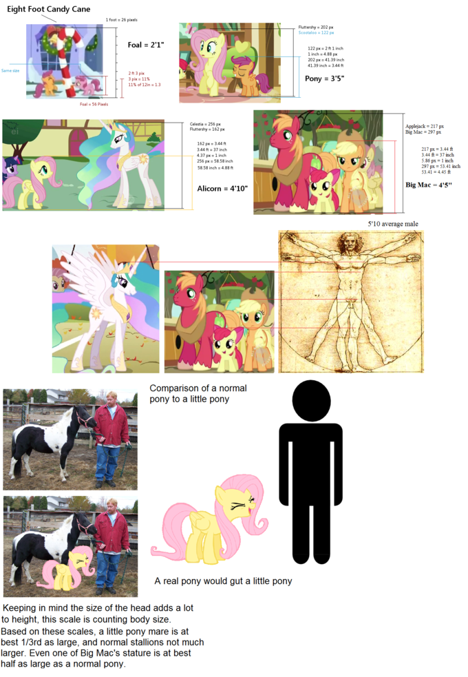 Pony/Human Size Comparison/Analysis
