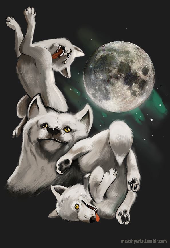 Three Wolf Moon Moon