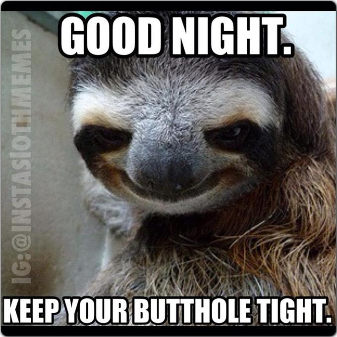sloth nighty night