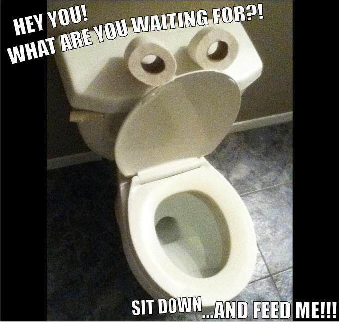 FEED ME!!