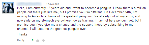 Youtube Comment #2
