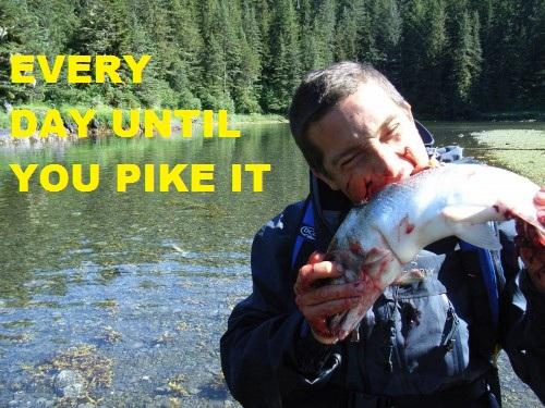 Every day until you pike it