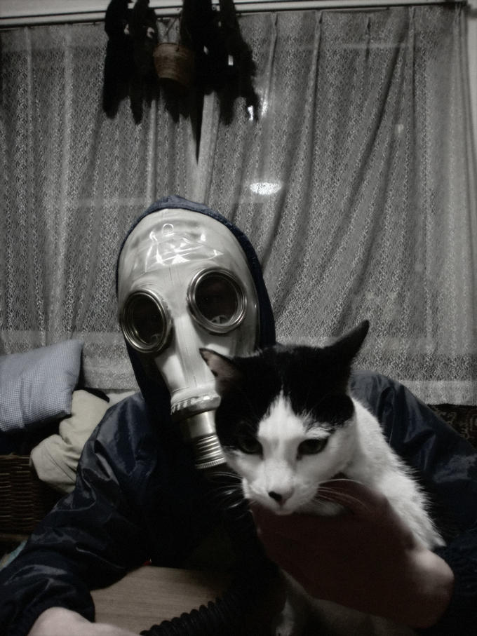Gas mask with cat.