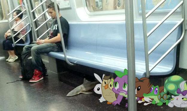 sidekicks and shark on a subway