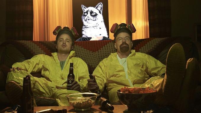 Breaking Bad Grumpy Cat photobomb costume