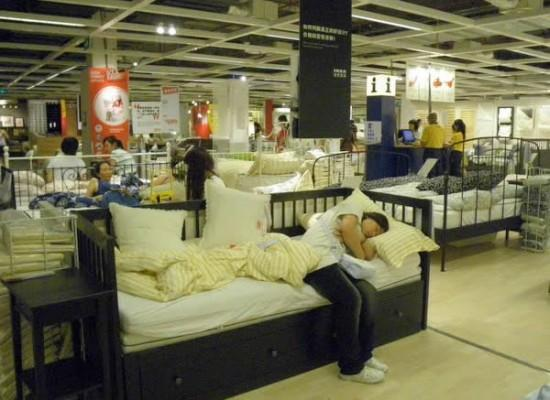 Asians Nap in IKEA